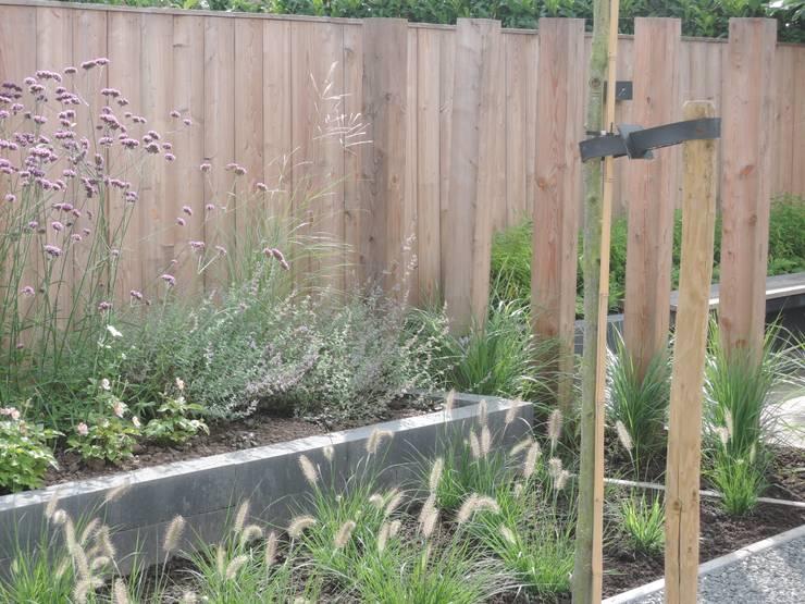 Omsloten achtertuin gerenoveerd in groningen:  Tuin door GroenerGras Hoveniers