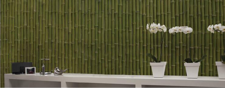 Piedra Bambú Decorativo Verde: Paredes y pisos de estilo  por ENFOQUE CONSTRUCTIVO