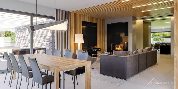 Projekt domu HoemKONCEPT 42: styl , w kategorii Salon zaprojektowany przez HomeKONCEPT | Projekty Domów Nowoczesnych