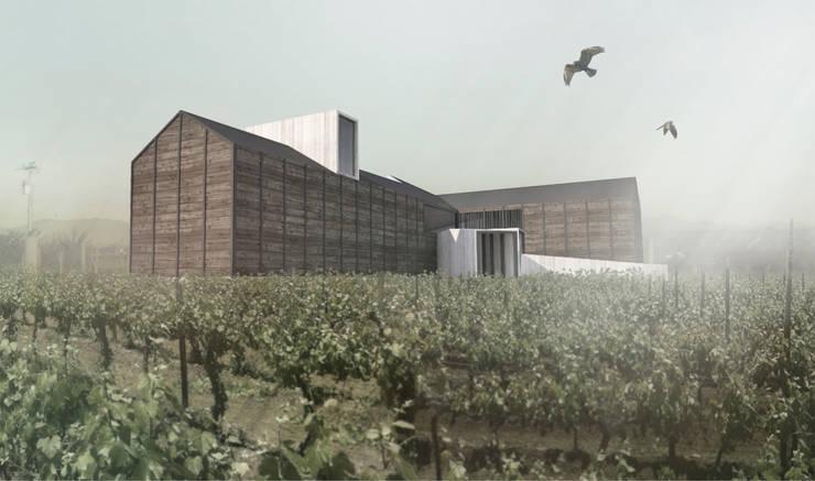 Viña Ocho Tierras: Casas de estilo  por Superficie Arquitectura