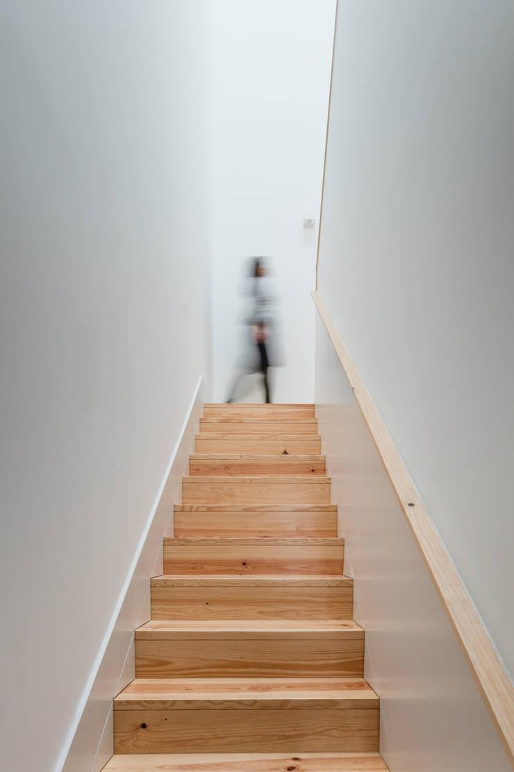 Escadas: Corredores e halls de entrada  por Pedro Ferreira Architecture Studio Lda,
