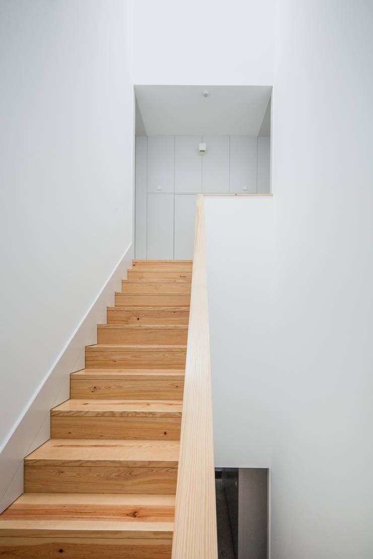 Alves da Veiga: Corredores e halls de entrada  por Pedro Ferreira Architecture Studio Lda,