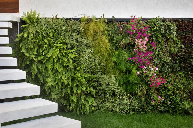 Сады в . Автор – Costa Bastos ArqPaisagismo, Тропический