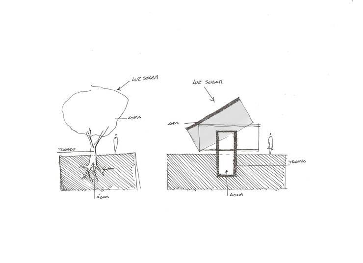 Dynamic Spaces:   por Casas Em Movimento,Moderno