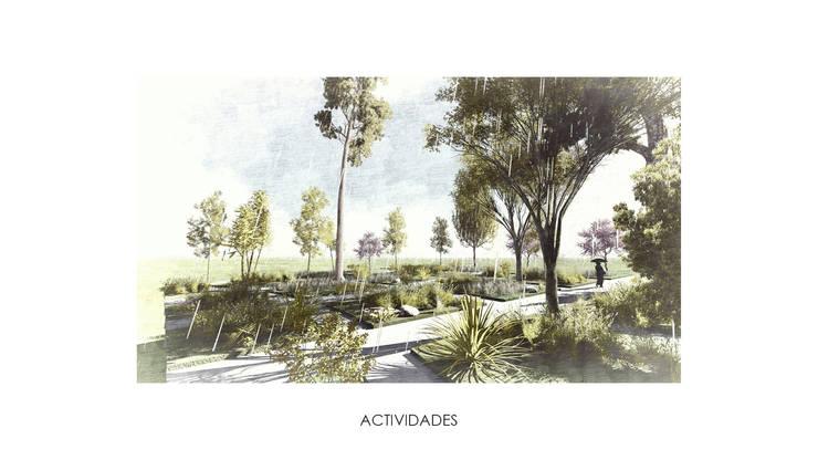Actividades:  de estilo  por gOO Arquitectos