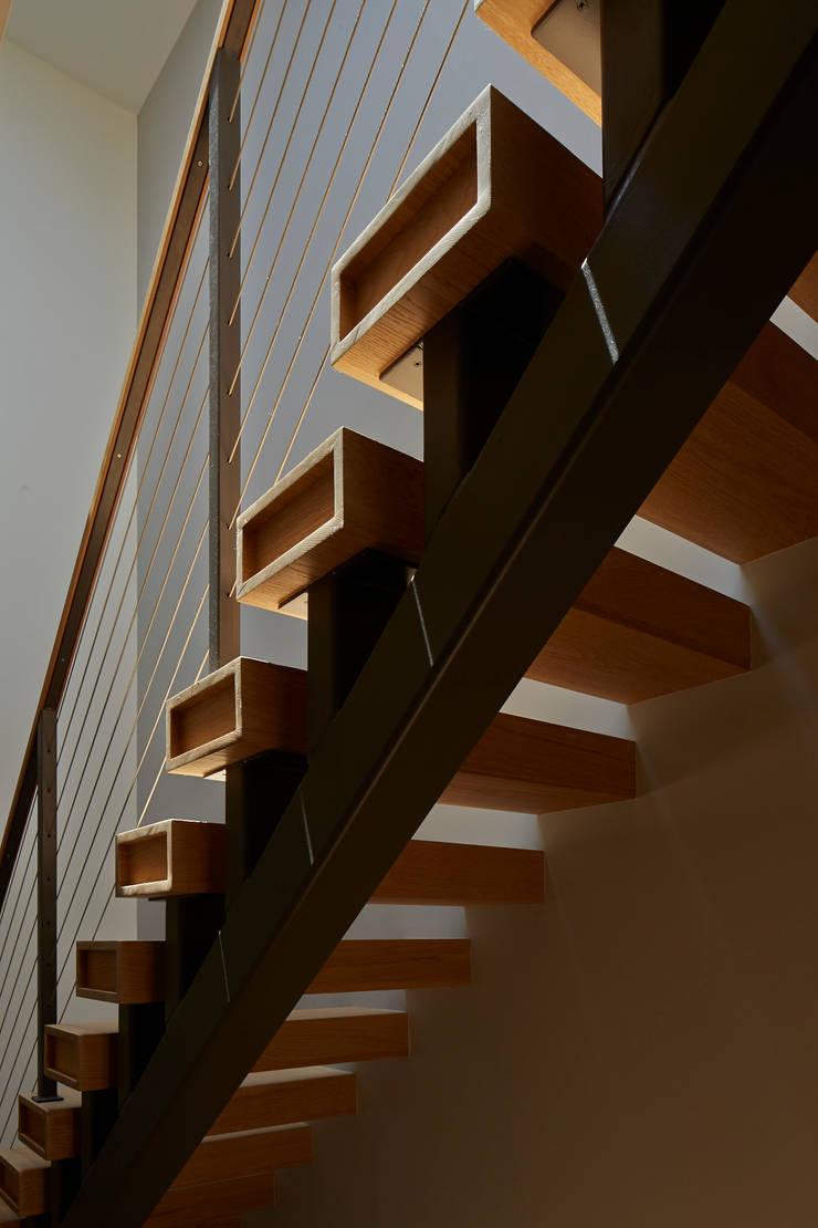 Cobble Hill Townhouse: modern Corridor, hallway & stairs by Sarah Jefferys Design