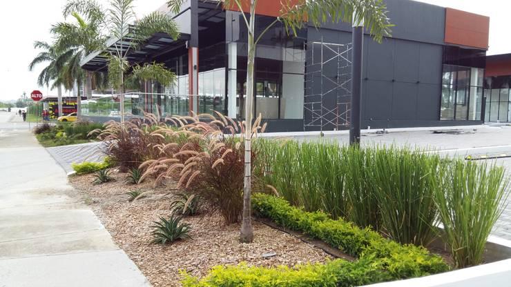THE CORNER PLAZA—PANAMA CITY:  Garden by TARTE LANDSCAPES