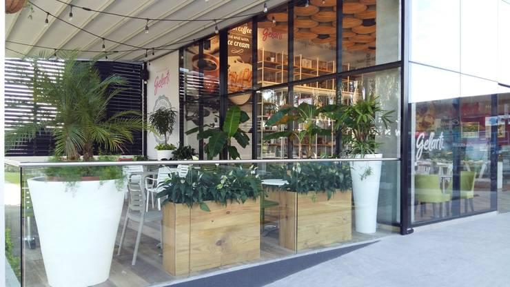 GELARTI AT COSTA DEL ESTE—PANAMA CITY: modern Garden by TARTE LANDSCAPES