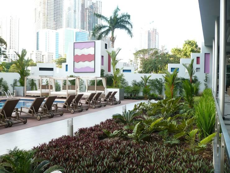 RIU PLAZA PANAMA HOTEL—PANAMA CITY: modern Garden by TARTE LANDSCAPES