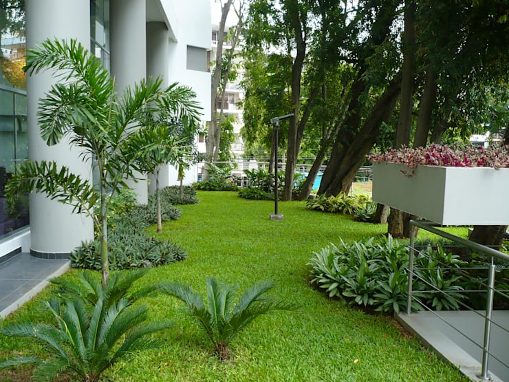 LUXOR TOWERS—PANAMA CITY: tropical Garden by TARTE LANDSCAPES