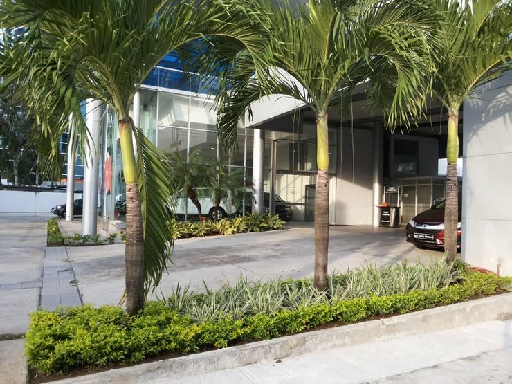 BAHIA MOTORS AT COSTA DEL ESTE - PANAMA CITY:  Garden by TARTE LANDSCAPES