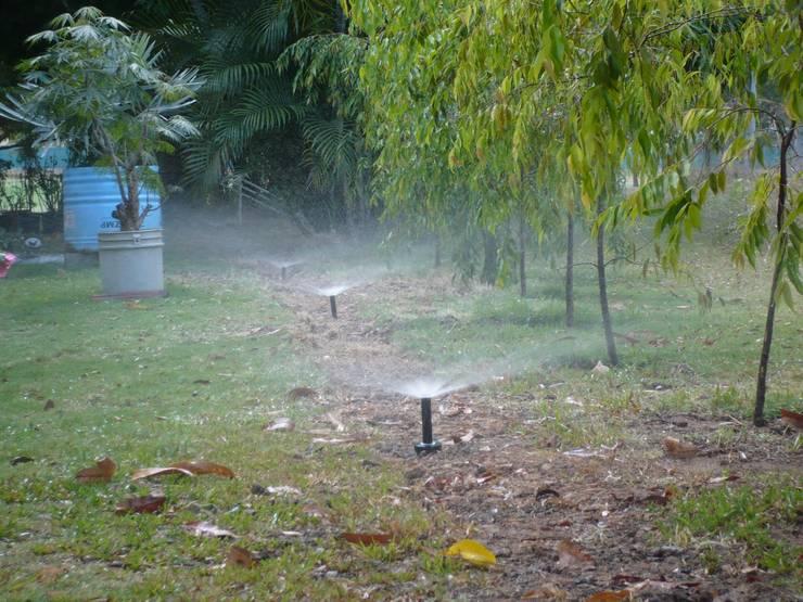 IRRIGATION SYSTEMS:  Garden by TARTE LANDSCAPES