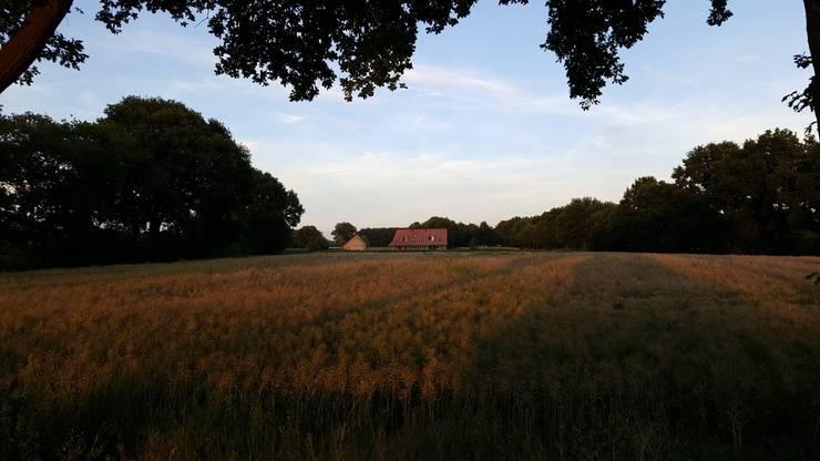 Vrijstaande woning in het landschap:  Huizen door Architectenbureau Jules Zwijsen