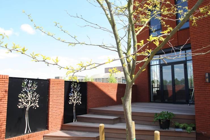 Hoekwoning Boddenkamp Enschede:  Terras door Architectenbureau Jules Zwijsen, Modern