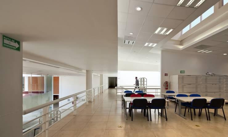 Biblioteca Central: Estudios y oficinas de estilo  por REC Arquitectura , Moderno