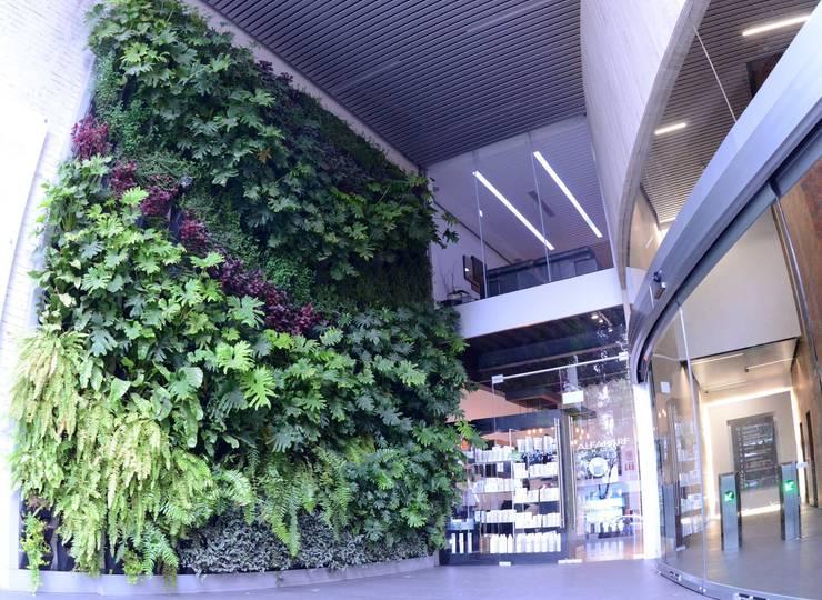 Muro Verde Guadalupe Inn Corp:  de estilo  por Regenera Mx - Fábrica Ecológica, Moderno