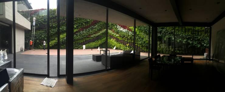Muro Verde Altavista:  de estilo  por Regenera Mx - Fábrica Ecológica, Moderno