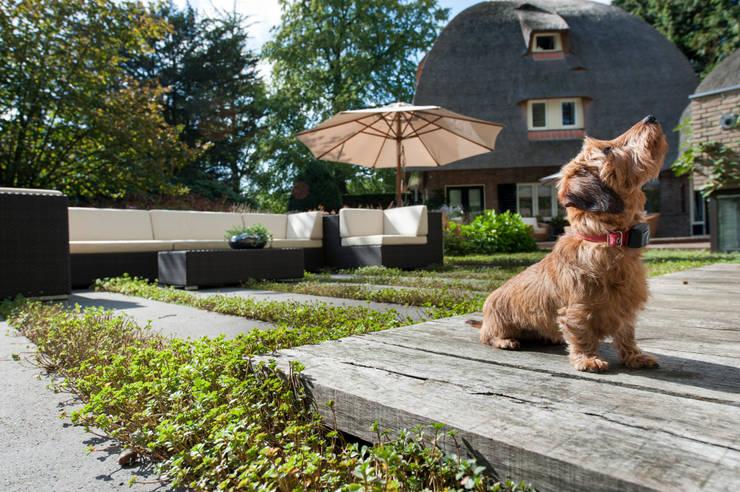 Tien jaar oude terrassentuin:  Terras door Jaap Sterk Hoveniers, Klassiek Massief hout Bont