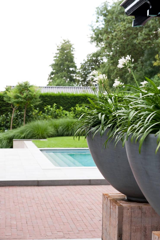 Luxe tuin met zwembad:  Terras door Jaap Sterk Hoveniers, Modern Kwarts
