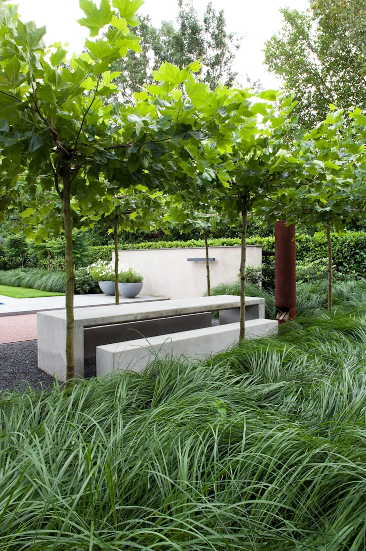 Luxe tuin met zwembad: modern  door Jaap Sterk Hoveniers, Modern Gewapend beton