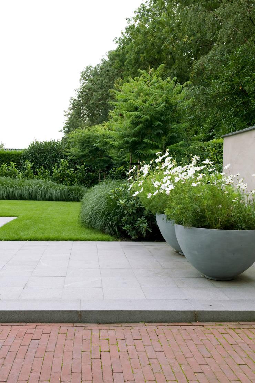 Luxe tuin met zwembad:  Tuin door Jaap Sterk Hoveniers, Modern