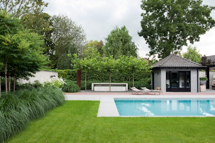 Luxe tuin met zwembad: modern  door Jaap Sterk Hoveniers, Modern Beton