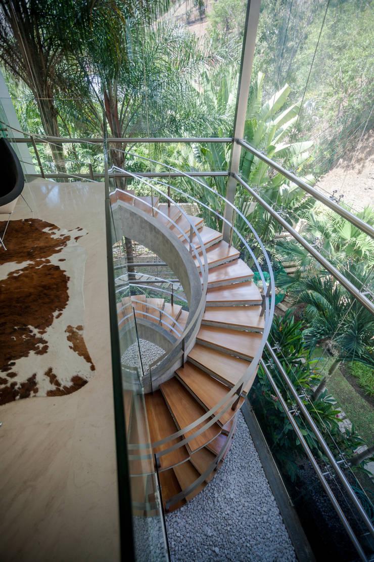 Casa 3: Pasillos y vestíbulos de estilo  por Vivian Dembo Arquitectura