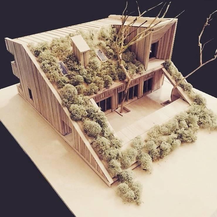 Projekty,   zaprojektowane przez Snegiri Architects