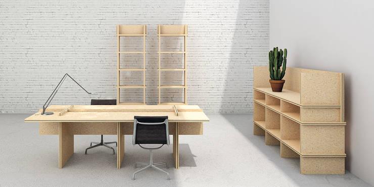 Werkruimte:  Studeerkamer/kantoor door De Nieuwe Context