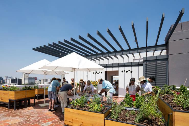 EDIFICIO CASA CORONADO: Jardines de estilo  por Trama Arquitectos