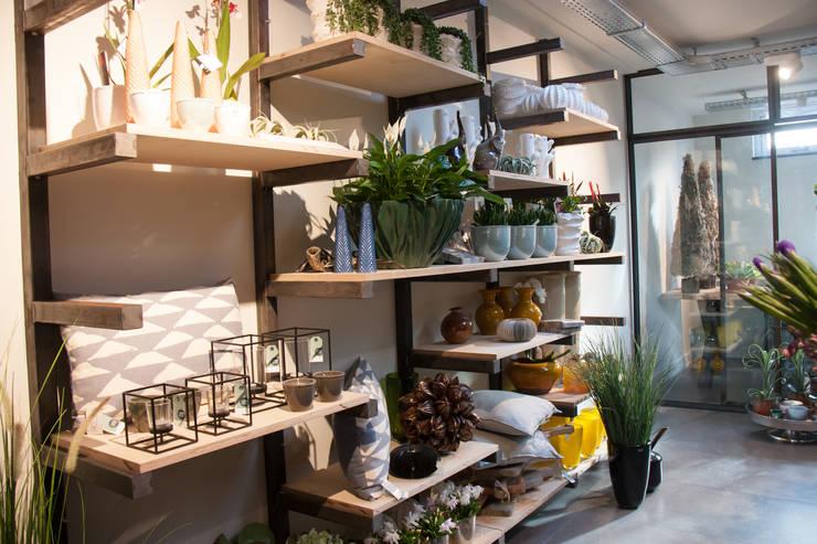 Herinrichting en nieuwe uitstraling voor De Bloemenweide in Haarlem:  Winkelruimten door Ien Interieurontwerp Advies Projectbegeleiding, Industrieel Hout Hout