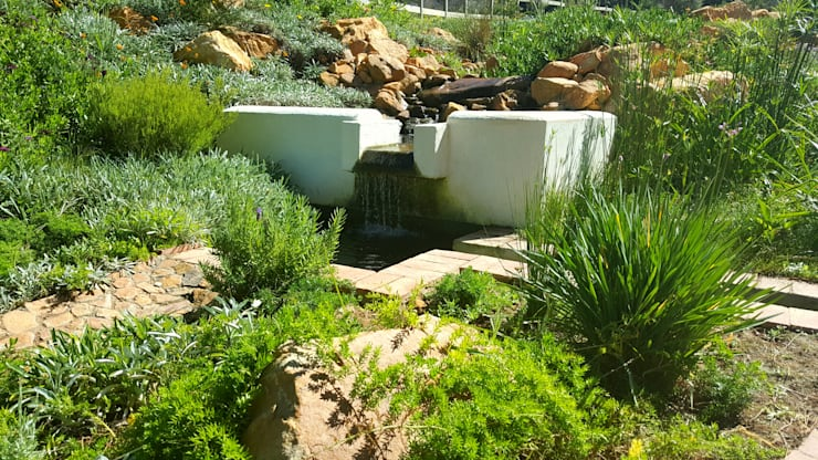 HOUSE THREE:  Garden by Greenacres Cape landscaping