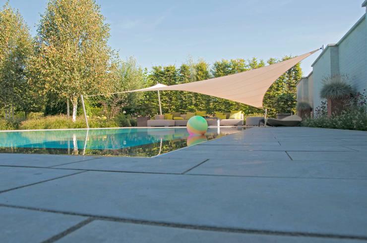 overloopzwembad :  Tuin door Tuintechnisch Bureau Smeulders, Landelijk