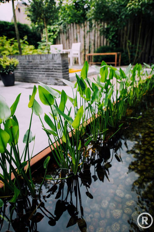 Modern garden by De Rooy Hoveniers Modern