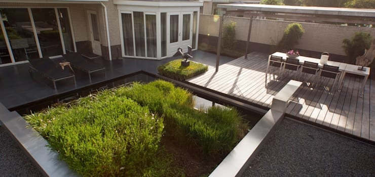 สวน โดย Heart for Gardens., โมเดิร์น