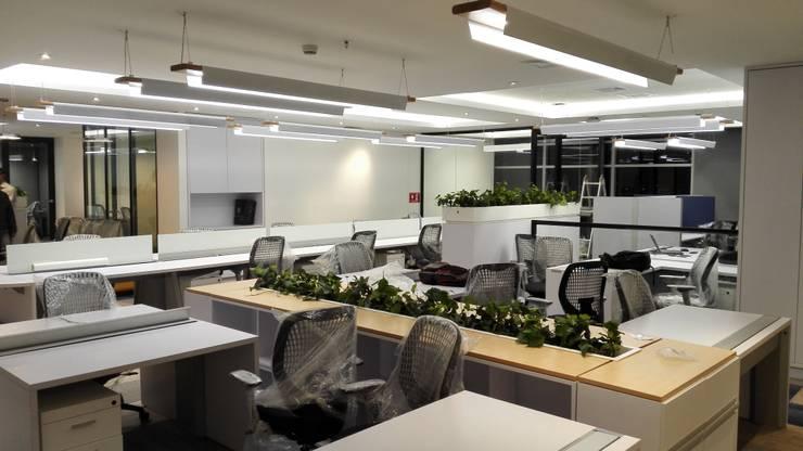OFICINA ABIERTA: Edificios de oficinas de estilo  por IngeniARQ,