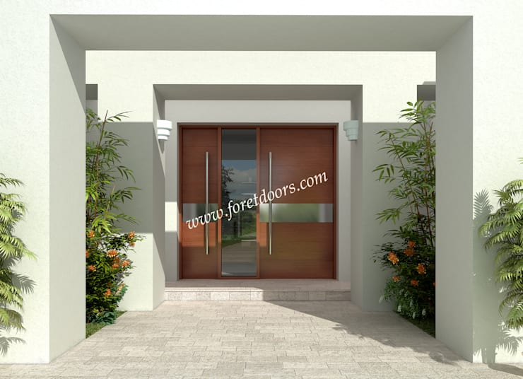 Modern front entry door with horizontal stainless steel stripe.:  Windows & doors  by Foret Doors