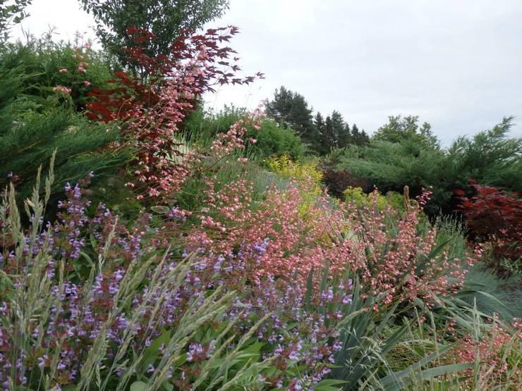 Family garden :  Garden by Magical Garden