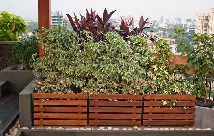 Potted plants:  Garden by Land Design landscape architects