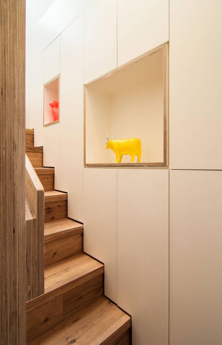 Pasillos y vestíbulos de estilo  de Bradley Van Der Straeten Architects, Moderno Contrachapado