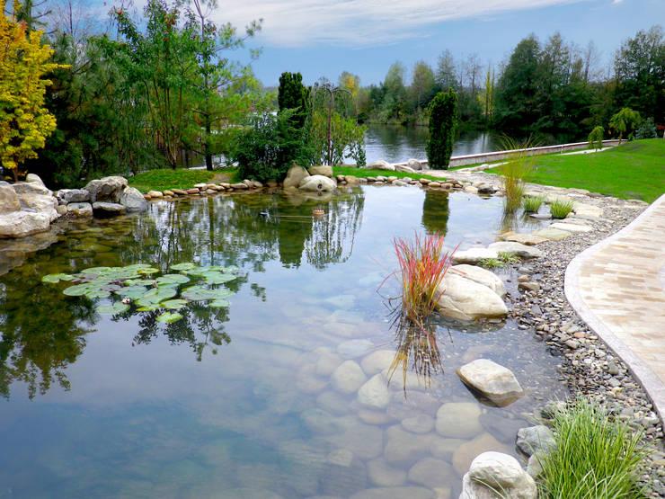 Плавательный пруд на территории:  в . Автор – Укр Ландшафт Парк