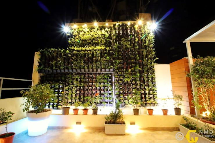 Dr Burte:  Interior landscaping by NMD Interiors