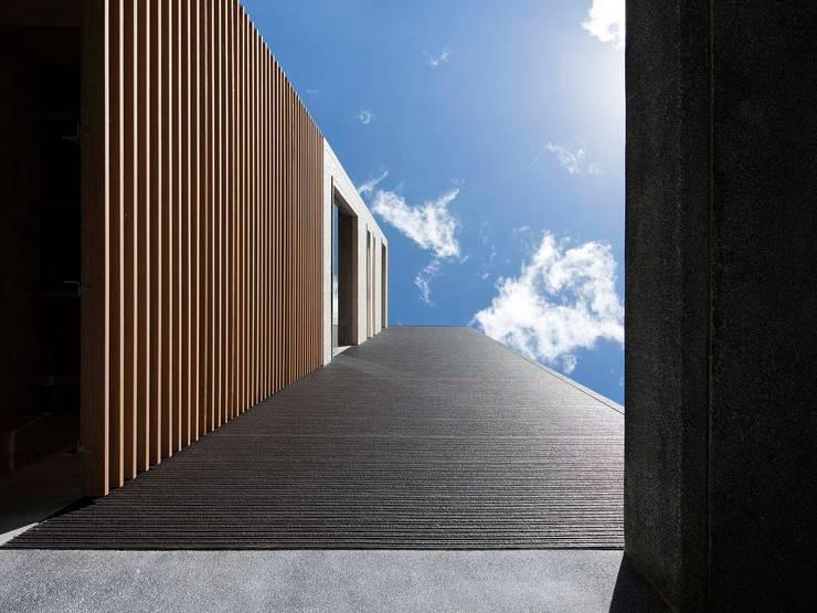 仰望:  房子 by 前置建築 Preposition Architecture