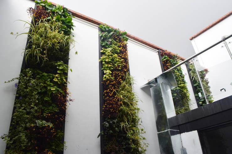 OFICINAS DE LA FUNDACION CATALINA MUNOZ: Edificios de oficinas de estilo  por Elementum Arquitectos SAS, Moderno