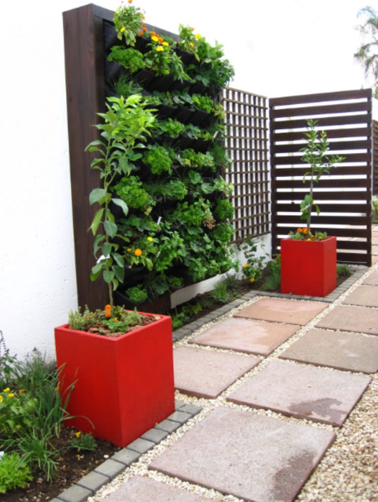 Small Garden spaces:  Garden by Young Landscape Design Studio