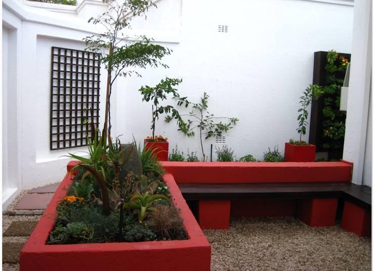 Small Garden spaces:  Garden by Young Landscape Design Studio, Modern