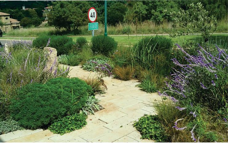 Prairie Style Front Garden:  Garden by Young Landscape Design Studio