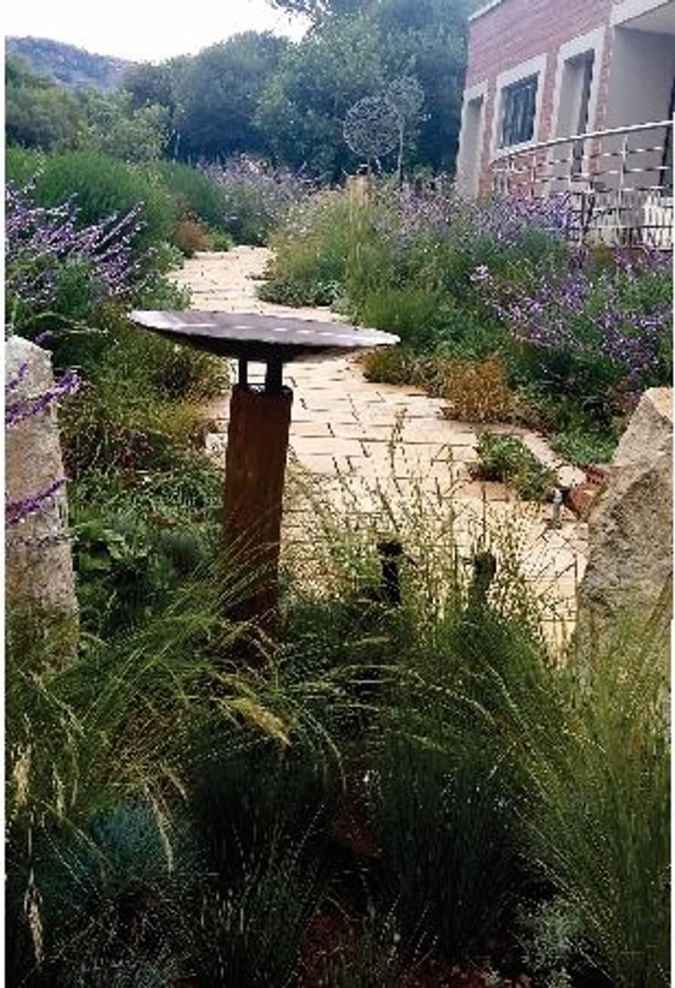 Prairie Style Front Garden:  Garden by Young Landscape Design Studio, Modern
