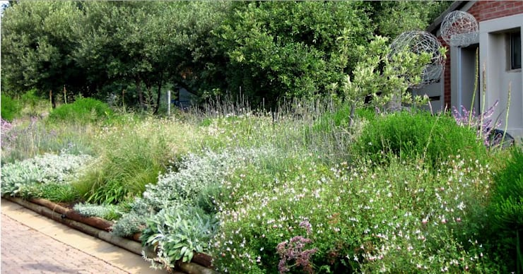 Prairie style Front Garden:  Garage/shed by Young Landscape Design Studio, Modern