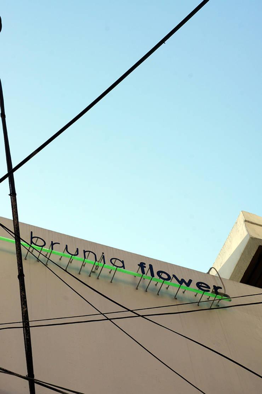 브루니아플라워: SPACEHWA의 현대 ,모던